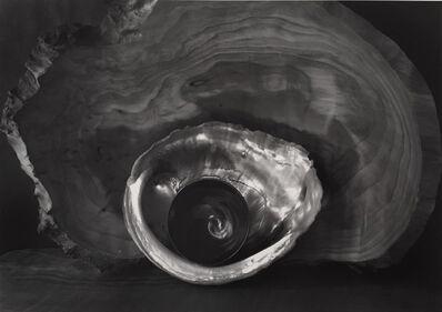 Paul Caponigro, 'Tea Bowl and Shell', 2002