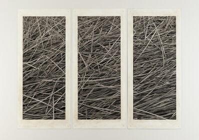 Michael Berman, 'Reeds ', 2013