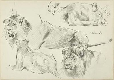 Wilhelm Lorenz, 'Sketch of Lions', Mid 20th Century