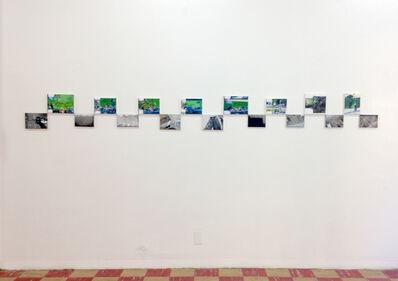 Karen Finley, 'Grassy Knoll / Camera Misfire', 2015