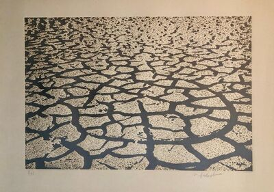 Menashe Kadishman, 'Israeli Modern Pop Art Aquatint Etching Cracked Earth Art Kadishman Lithograph', 1970-1979