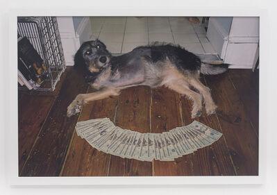 Andrew Jeffrey Wright, '3 legged dog on floor', 2010