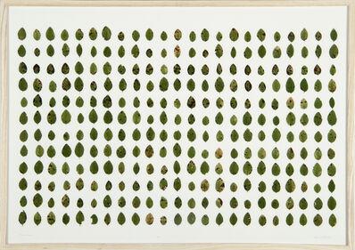 herman de vries, 'vaccinium (collected hirschdelle)', 2011