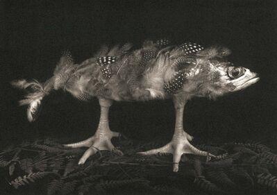 Michiko Kon (今 道子), 'Mackerel and Chicken Legs', 1990