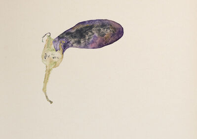 Edgar Honetschläger, 'Melanzana', 2018