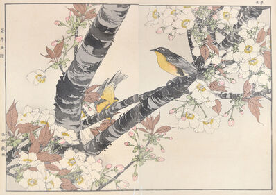 Imao Keinen and Morizumi Yugoyo, 'Cherry Blossoms and Narcissus Flycatchers', 1891