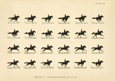 Eadweard Muybridge, 'The Horse in Motion as Shown by Instantaneous Photography with a Study on Animal Mechanics..', 1881-1882