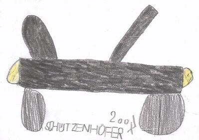 Günther Schützenhöfer, 'Airplane', 2007