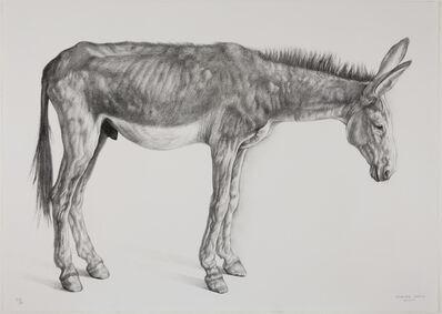 Claudio Bravo, 'Burro Delgado (Think Donkey)', 2007