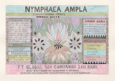 Suzanne Treister, 'HFT The Gardener/Outsider artworks/Nymphaea ampla (White Water Lily)', 2015