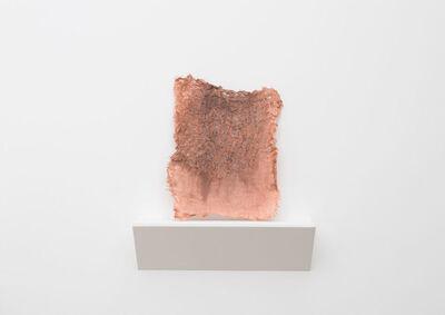 Tanya Aguiñiga, 'Preserve 2', 2015