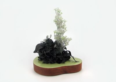 Rain Harris, 'Vidris (Black Clay Flowers)', 2015