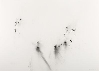 herman de vries, 'untitled (23-2-2018)', 2018