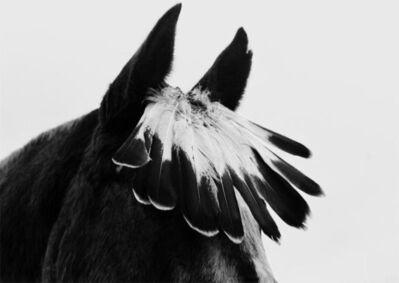 Flor Garduño, 'Caballo con plumas, USA', 1993