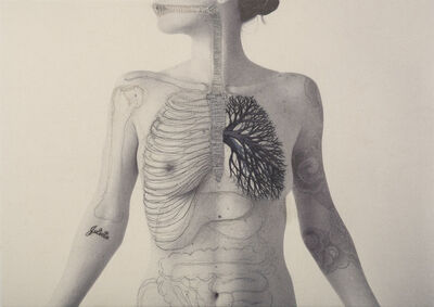 Juana Gomez, 'SYSTEM ', 2016