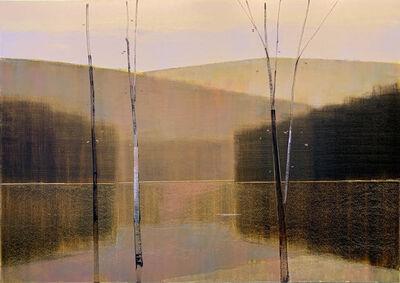 Stephen Pentak, '2019, VII.I', 2019