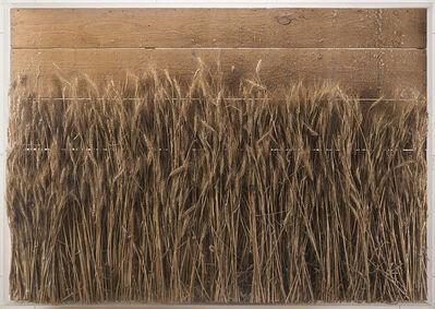 Mario Ceroli, 'Campo di grano', 1979
