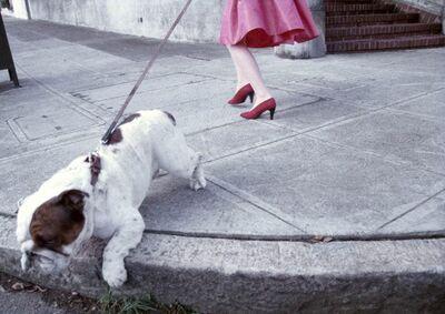 Robert Farber, 'Bulldog'