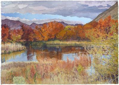 Sheila Gardner, 'Shades of Bronze on Silver Creek'