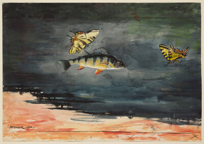 Winslow Homer, 'Fish and Butterflies', 1900