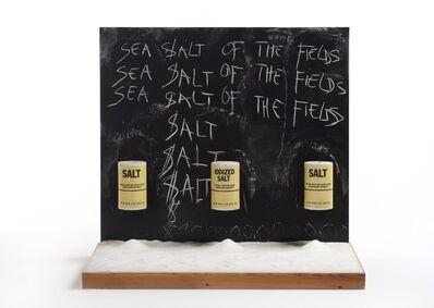 Jan Fabre, 'Sea Salt of the Fields', 1980