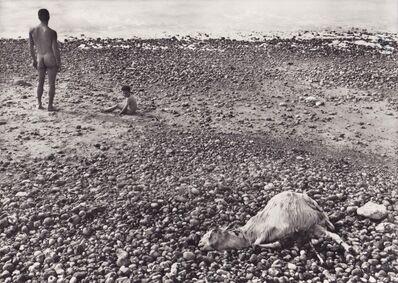 Agnès Varda, 'Ulysse (vintage)', 1954