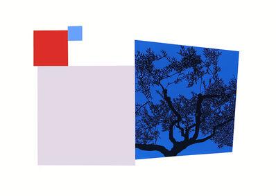Andrew Carter, 'Olive Tree, Umbria', 2015