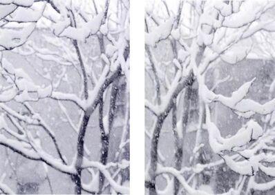 Seton Smith, 'Snow Trees #4', 2006