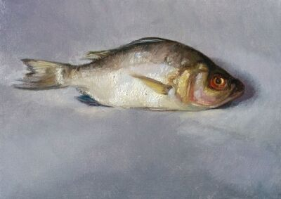 Shira Friedman, 'White Perch', 2019