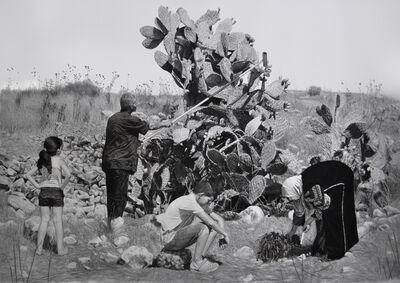 Samah Shihadi, 'Cactus', 2016