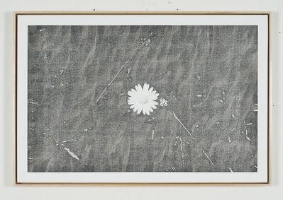 Martin Bennett, 'Static Image Painting/Grey/Wildflower/Wildwood Road/Hampstead/London/Walking Back From Heathwood/Two', 2015-2016
