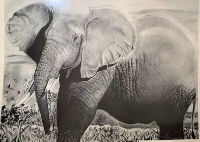 Jameel Rasheed, 'The Mighty Elephant', 1993