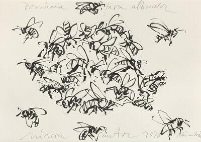 Mircea Cantor, 'Țara albinelor', 2020