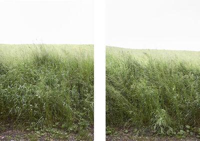 Paola De Pietri, 'Untitled 023 & 024, Questa Pianura series', 2014