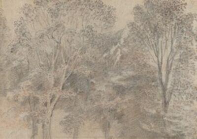 Jean-Antoine Watteau, 'Treetops [verso]'