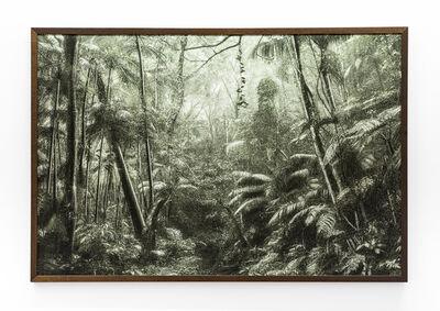 Cassio Vasconcellos, 'A Picturesque Voyage through Brazil # 37     ', 2015