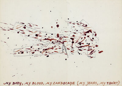 Jan Fabre, 'My Body, My Blood, My Landscape', 1978