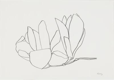 Ellsworth Kelly, 'Magnolia', 1966
