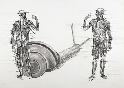 Osmeivy Ortega Pacheco, 'Muscelos del cuerpo [The muscles of the body]', 2011