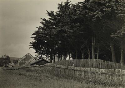 Ansel Adams, 'Farm Buildings, Fence, and Evergreens.', Circa 1945