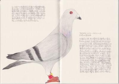 Lee Lichung, 'Pigeon - TAIWAN 2016-0450321', 2018
