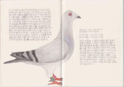 Lee Lichung, 'Pigeon - TAIWAN 2016-0730807', 2018