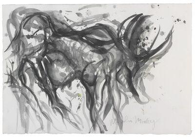 Morley, 'Sans titre (Zébu) ', ca. 1982