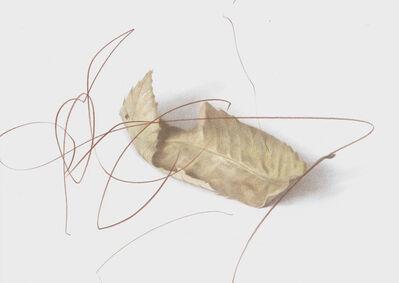 Luca Bertolo, 'Les Feuilles Mortes #3', 2013