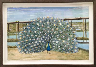 Nancy Jackson, 'Peacock', 2015
