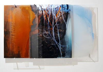 Janet Laurence, 'Harvesting Dew', 2011