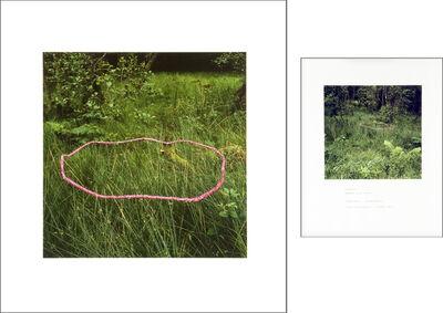 Andy Goldsworthy, 'Foxgloves threaded onto rushes Scaur Glen, Dumfriesshire', 1990