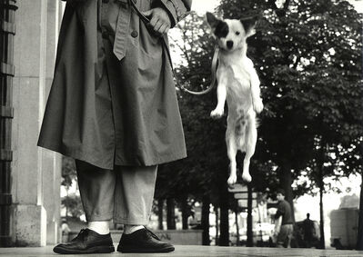 Elliott Erwitt, 'Paris, France (Dog Jumping)', 1989
