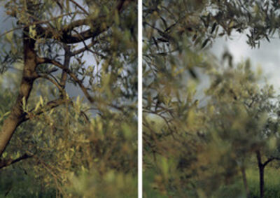 Joann Verburg, 'Waiting in Bazzano', 2008