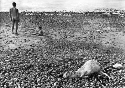 Agnès Varda, 'Ulysse', 1954